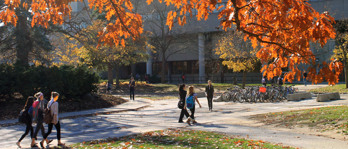 SSC in the fall